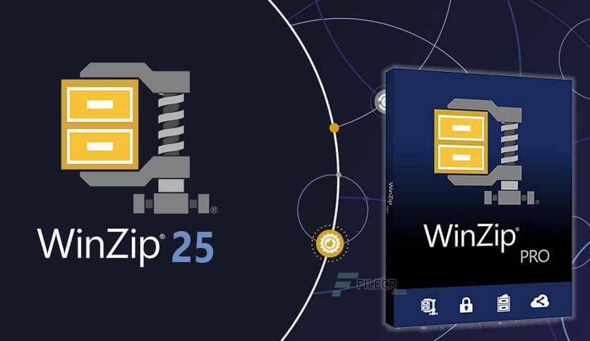 WinZip Crack Free Download